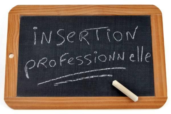Une Insertion Professionnelle réussie